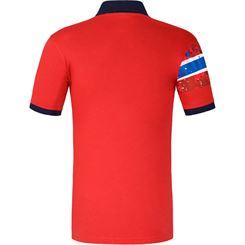 Polo shirt ARENDAL Men