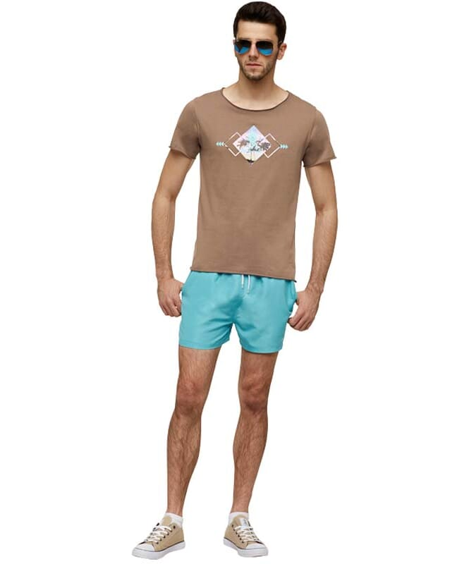 Summerfresh T-Shirt BLUE Herren braun